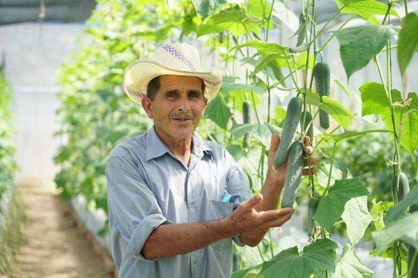 Cristino and his chiles