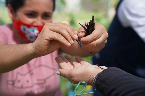 Cultivando la paz en Colombia