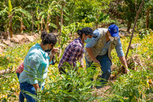 Construir comunidades resilientes es máxima prioridad, dice el Director Ejecutivo del WFP durante visita a Centroamérica