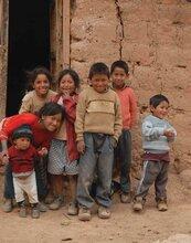 Informe anual: Perú 2009