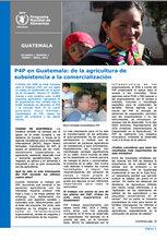 Guatemala: boletines informativos del 2013