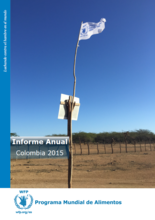 Informe Anual Colombia 2015