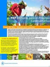 Boletín Compras para el Progreso (P4P) - Centroamérica (Octubre)