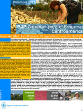 Boletín Compras para el Progreso (P4P) - Centroamérica (Diciembre)