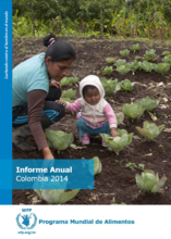 Informe Anual Colombia 2014