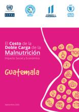 El costo de la doble carga de la malnutrición. Impacto social y económico en Guatemala