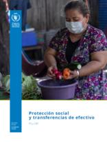 Protección social y transferencias de efectivo