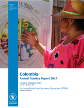 Informe Anual Colombia 2017