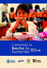 Cerrando la brecha de nutrientes en Ecuador