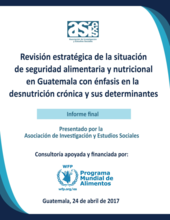 2017 - Food Security and Nutrition in Guatemala